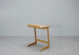 Flex Tray Table_1
