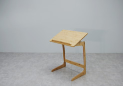Flex Tray Table_2