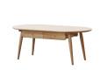 Luna Coffee Table2