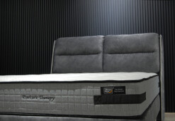 Sleepynight_Posture Therapy_2