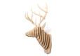 wall-mount-elk_1